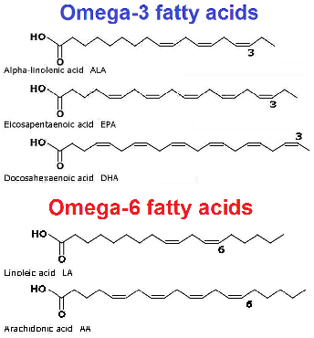 omega-3-and-omega-6-fatty-acids